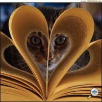 chat-livre-4_imagesia-com_wx7q_small