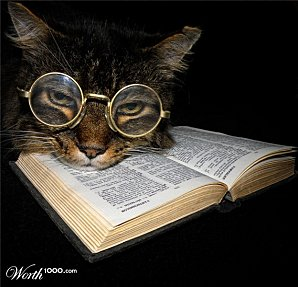 Chat---lunettes-lisant-un-livre