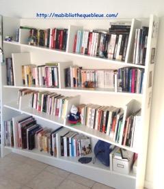 ma bibliothèque bleue