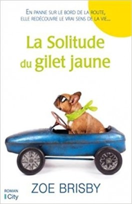 la-solitude-du-gilet-jaune-950933-264-432