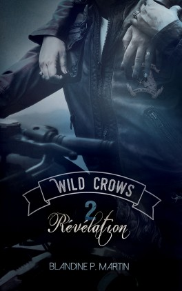 wild-crows---tome-2---r-v-lation-1034165-264-432