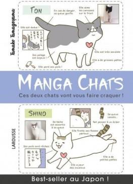 manga-chats-ces-deux-chats-vont-vous-faire-craquer-1091461-264-432