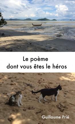 le-poeme-dont-vous-etes-le-heros-996918-264-432